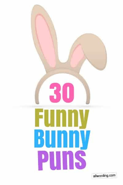 Puns using the words bunny, rabbit, hare, etc.
