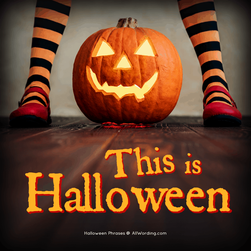 This is Halloween